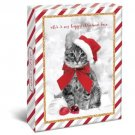 "Holiday Cats Boxed 4"" x 6"" Christmas Cards (20) Glitter & Foil Embellished with Envelopes"