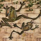 Leapin' Wall Frogs