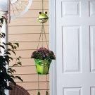 Hanging Frog Planter