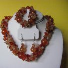 Carnelian Gemstone Necklace Earring Bracelet Set