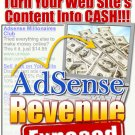 Adsense revenue exposed.