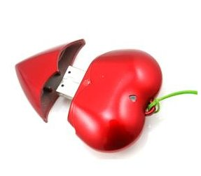 New 1GB Real Heart-Red USB 2.0 Flash Drive Memory (Red)