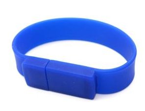 New 1GB Wrist Memory Card (Blue)