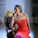 2012 Sexy Prom Dress & Quinceanera Dress 9loverQ0014