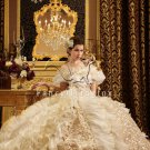 2013 Luxurious Champagne Gothic wedding dresses PRO2
