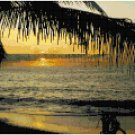 Puerto Vallarta Sunset Seascape Pattern Chart Graph