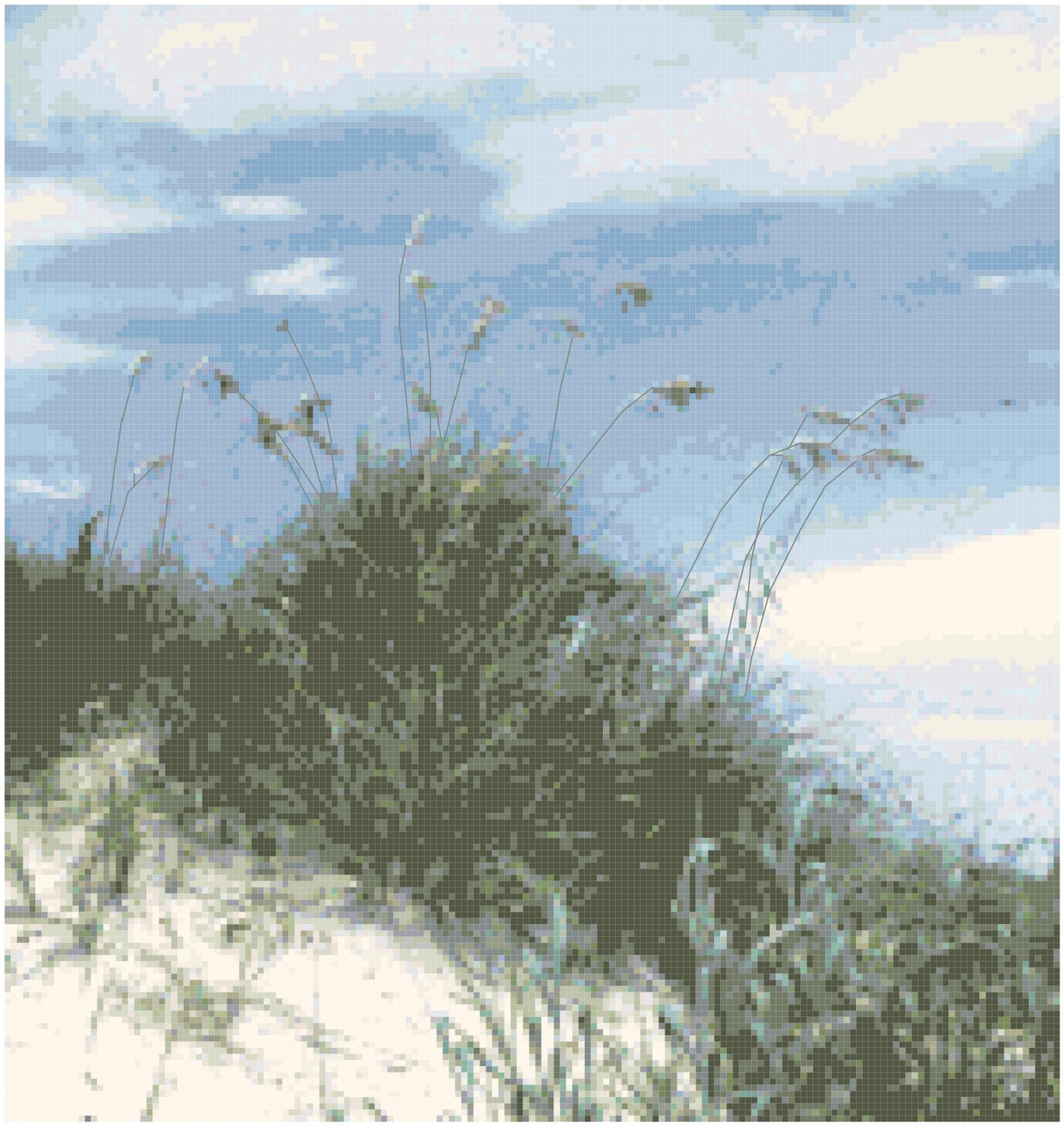 Sand Dune and Sea Oats Seascape Pattern Chart Graph