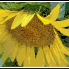 Shy Sunflower Pattern Chart Graph