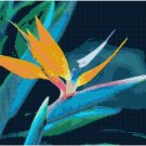 Bird of Paradise Pattern Chart Graph