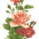 Garden Fresh Roses Pattern Chart Graph