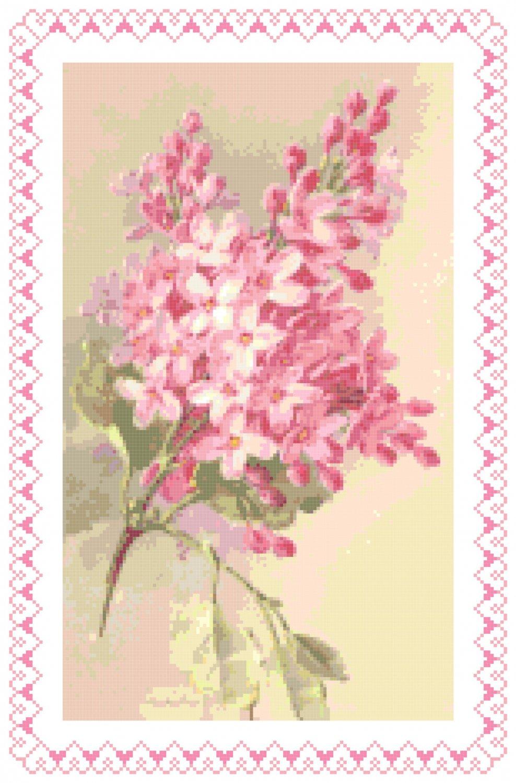 Old Fashioned Pink Lilacs Pattern Chart Graph