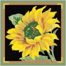 Sunflower Pattern Chart Graph