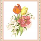 Tulips and Snowdrops Pattern Chart Graph