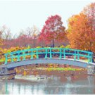 Monet Bridge Landscape Pattern Chart Graph