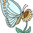 Butterfly Summer Pattern Chart Graph