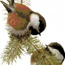 Chestnut Backed Chickadees Pattern Chart Graph