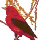 Scarlet Tanager Pattern Chart Graph