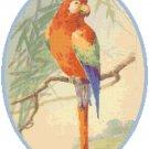 Scarlet Macaw Pattern Chart Graph