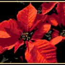 Deep Red Poinsettia Pattern Chart Graph
