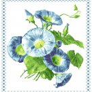 Morning Glories Pattern Chart Graph
