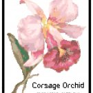 Corsage Orchid Pattern Chart Graph