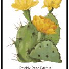 Prickly Pear Cactus Pattern Chart Graph