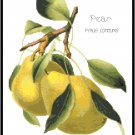 Pears - Redoute Pattern Chart Graph