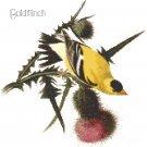 Audubon Goldfinch Pattern Chart Graph