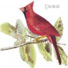 Audubon Cardinal Pattern Chart Graph