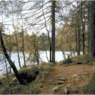 A Perfect Fishing Spot Landscape Cross Stitch Pattern Chart Graph