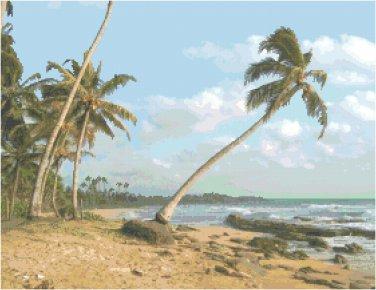 Coconut Isle Pattern Chart Graph