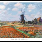 Tulip Fields 1886 by Monet Pattern Chart Graph