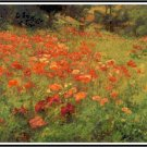 In Poppyland - John Ottis Adams Pattern Chart Graph