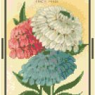 Antique Candytuft Flower Seed Packet Pattern Chart Graph