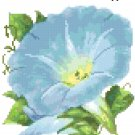 Antique Morning Glory Flower Seed Packet Pattern Chart Graph