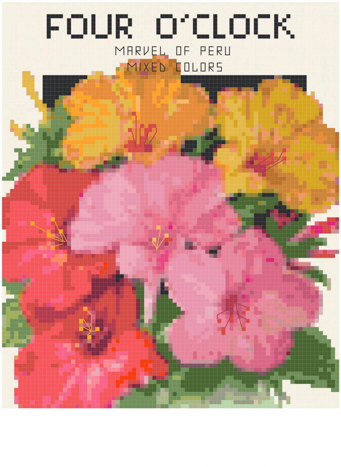 Antique Four O'Clock Flower Seed Packet Pattern Chart Graph