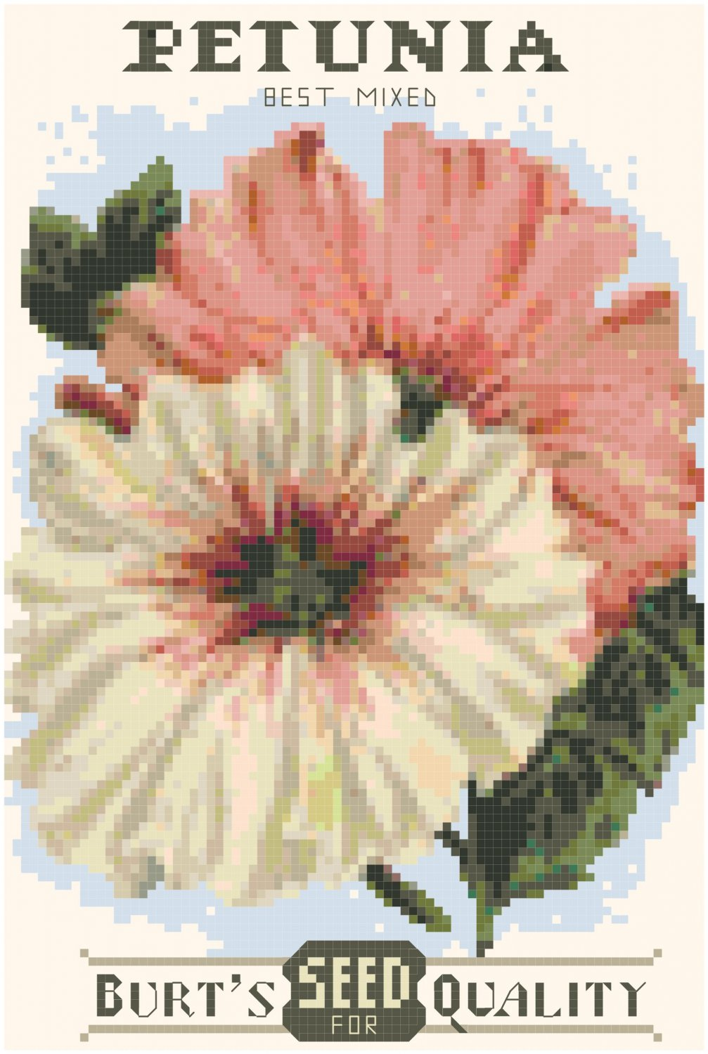 Antique Petunia Flower Seed Packet Pattern Chart Graph