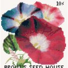 Morning Glories Flower Seed Packet Pattern Chart Graph