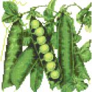 Antique Peas Seed Packet Pattern Chart Graph