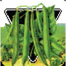 Antique Beans Seed Packet Pattern Chart Graph