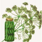 Antique Dill Seed Packet Pattern Chart Graph