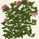 Antique Thyme Seed Packet Pattern Chart Graph