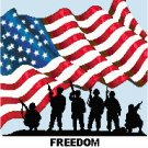 Freedom Is Never Free Cross Stitch Pattern Chart Graph