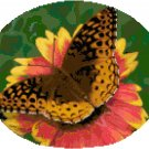 Zerene Fritillary Butterfly Cross Stitch Pattern Chart Graph