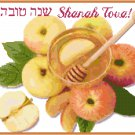 Rosh Hashanah Cross Stitch Pattern Chart Graph