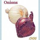 Country Onion Pattern Chart Graph