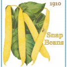 Country Snap Beans Cross Stitch Pattern Chart Graph