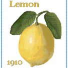 Country Lemon Cross Stitch Pattern Chart Graph