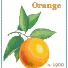 Country Orange Cross Stitch Pattern Chart Graph
