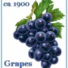 Country Grapes Cross Stitch Pattern Chart Graph